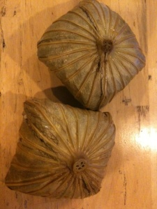 Lotus leaf-wrapped parcels, so mysterious!