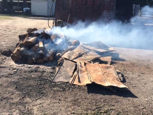 Burning oak in Wilber's backyard